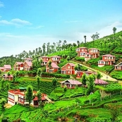 Ooty Tour Packages in India